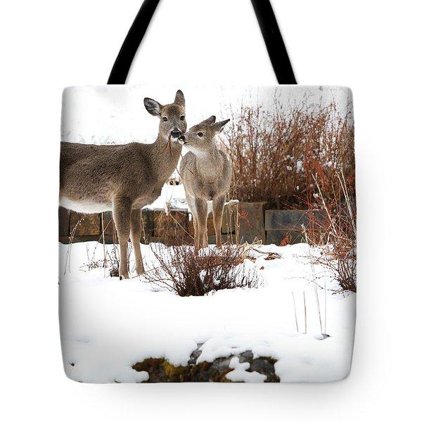 Gardening Tote Bag by Aaron Aldrich