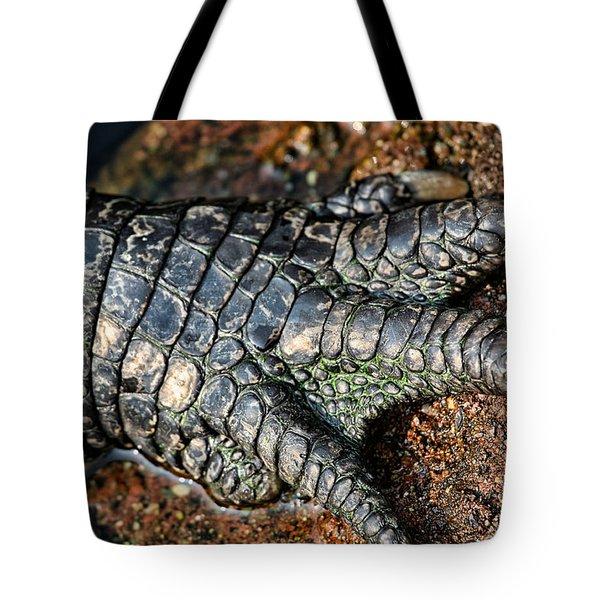 Gator Manicure Tote Bag by Karol  Livote