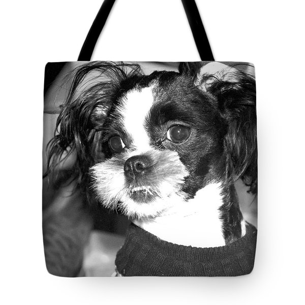 Geez Mom Nothing Happened............. Tote Bag by Antonia Citrino
