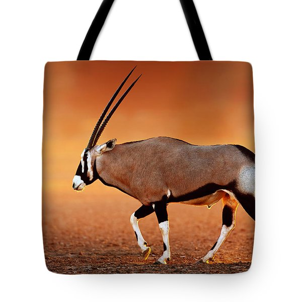 Gemsbok On Desert Plains At Sunset Tote Bag by Johan Swanepoel