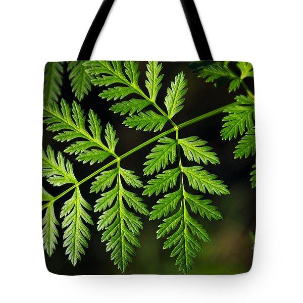 Gereric Vegetation Tote Bag by Carlos Caetano