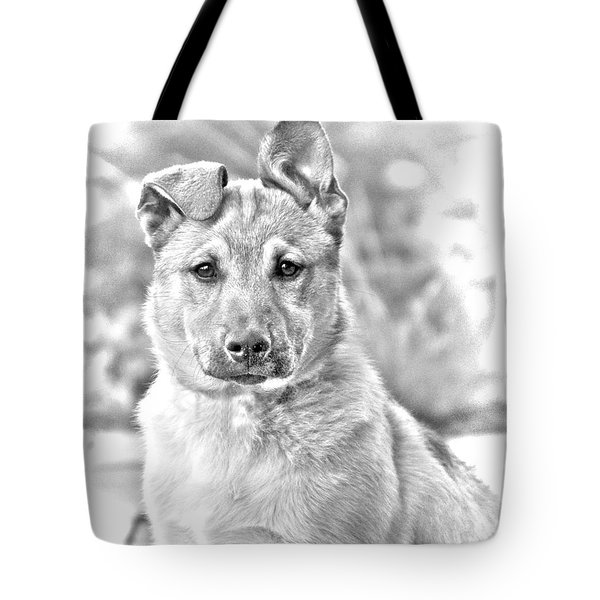 German Shepard Puppy Tote Bag by James BO  Insogna