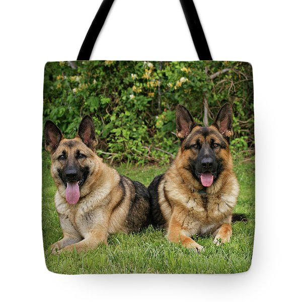 German Shepherds - Mother And Son Tote Bag by Sandy Keeton