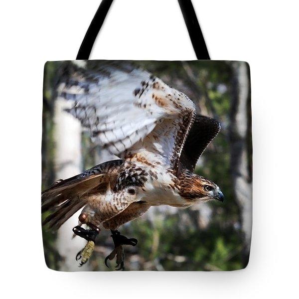 Geronimo Tote Bag by Christina Rollo