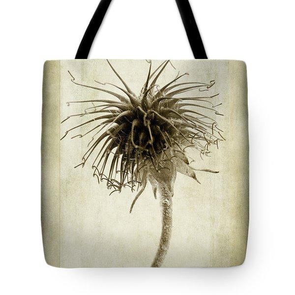 Geum Urbanum In Sepia Tote Bag by John Edwards