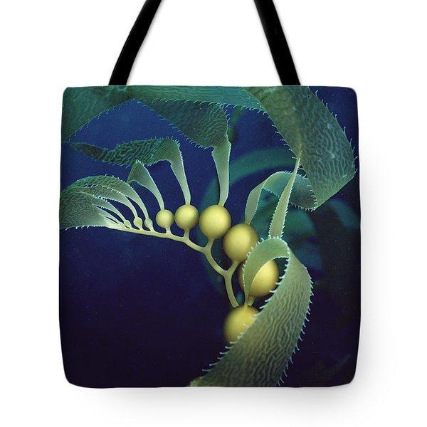 Giant Kelp Macrocystis Pyrifera Detail Tote Bag by Flip Nicklin