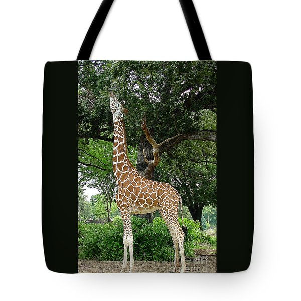 Giraffe Eats-09053 Tote Bag by Gary Gingrich Galleries