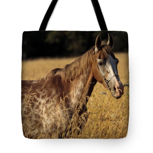 Giraffe Horse D7330 Tote Bag by Wes and Dotty Weber