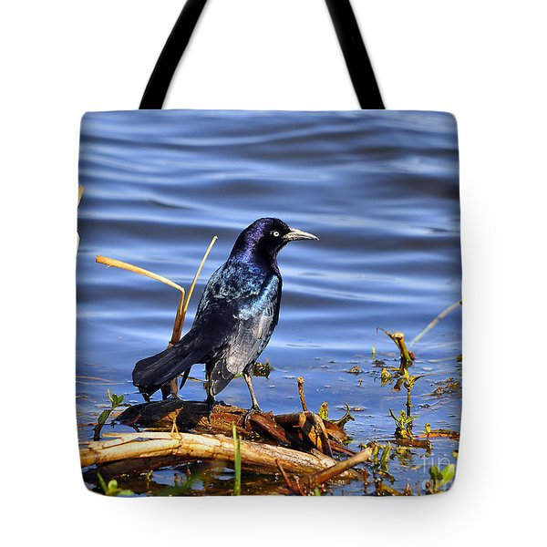 Glorious Grackle Tote Bag by Al Powell Photography USA