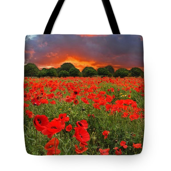 Glorious Texas Tote Bag by Lynn Bauer