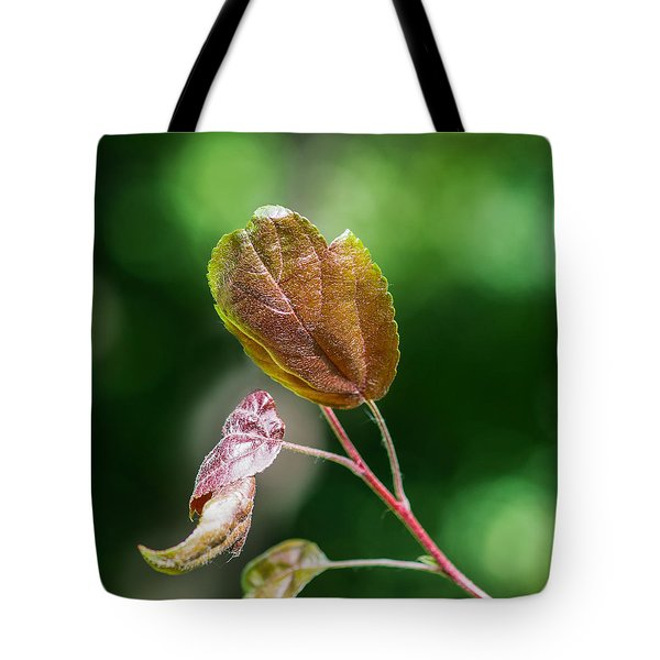 Glossy Nature - Featured 3 Tote Bag by Alexander Senin