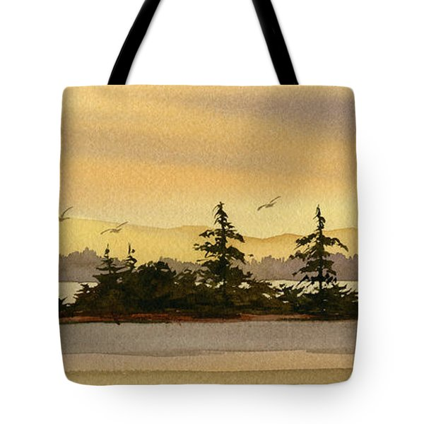 Glow Of Dawn Tote Bag by James Williamson