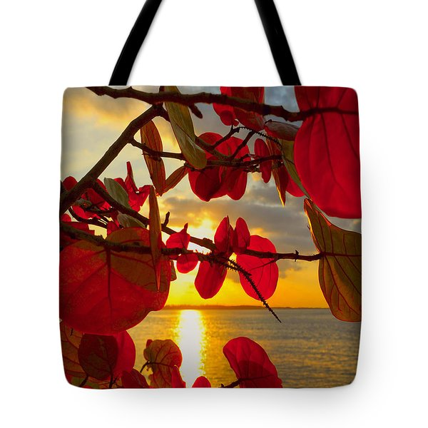 Glowing Red Tote Bag by Stephen Anderson