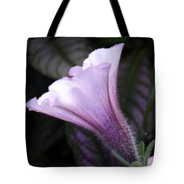 God's Grace Is Enough Tote Bag by Sara  Raber