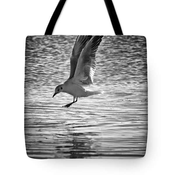 Going Fishing Tote Bag by Stylianos Kleanthous