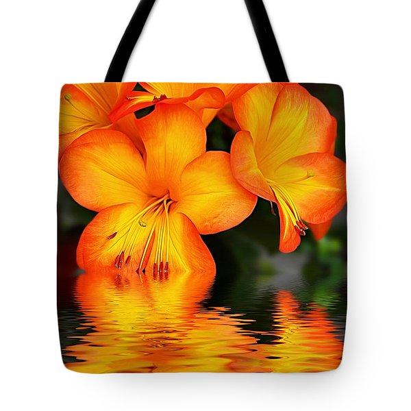 Golden Dreams Tote Bag by Kaye Menner