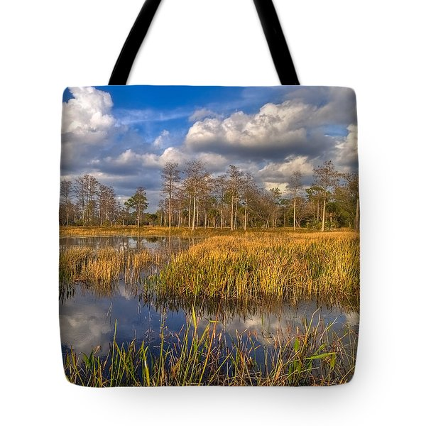 Golden Grasses Tote Bag by Debra and Dave Vanderlaan