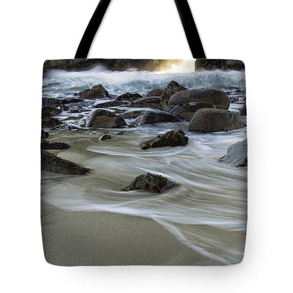 Golden Key Tote Bag by Michele Steffey