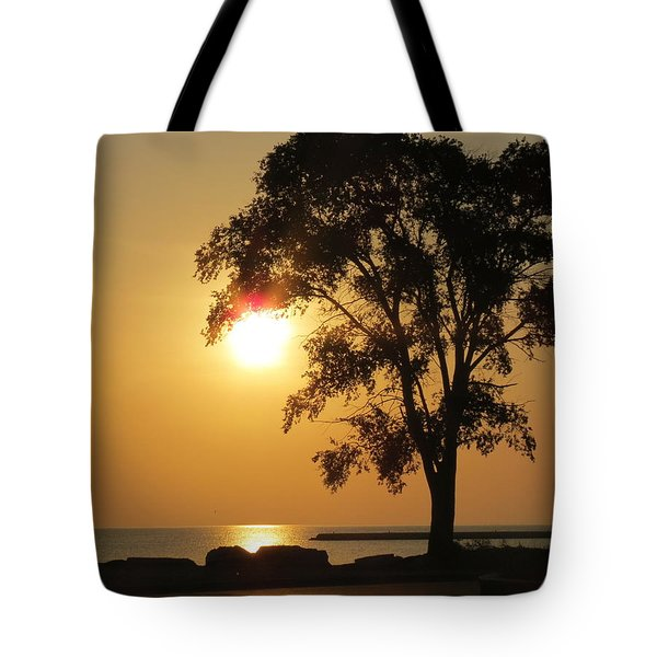 Golden Morning Tote Bag by Kay Novy