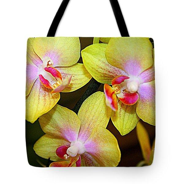 Golden Orchids Tote Bag by Dora Sofia Caputo Photographic Art and Design