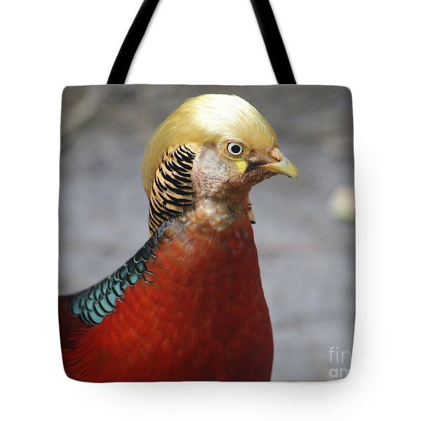 Golden Pheasant Tote Bag by Marty Fancy