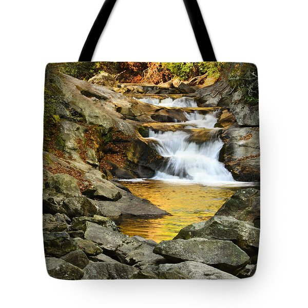 Golden Pond Tote Bag by Penny Lisowski
