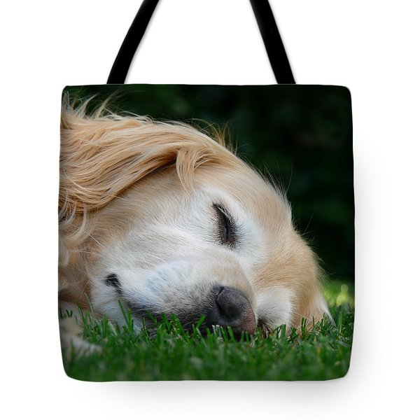 Golden Retriever Dog Sweet Dreams Tote Bag by Jennie Marie Schell