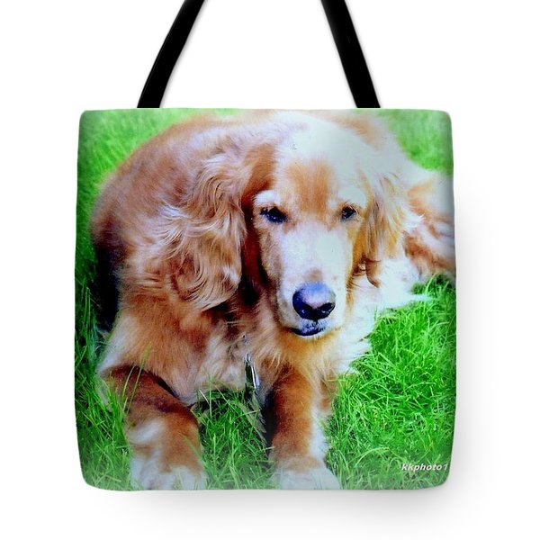 Golden Retriever Tote Bag by Kay Novy