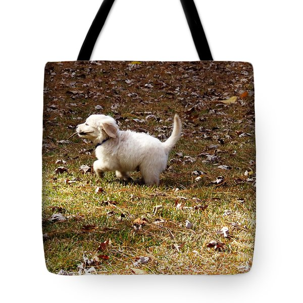 Golden Retriever Puppy Tote Bag by Andrea Anderegg