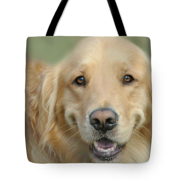 Golden Retriever Standard Tote Bag by Diana Angstadt