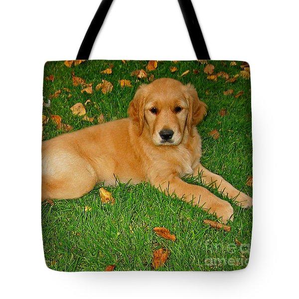 Golden Retriever Tote Bag by Teresa Zieba