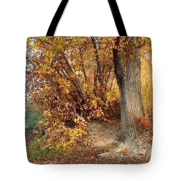 Golden Riverbank Tote Bag by Carol Groenen