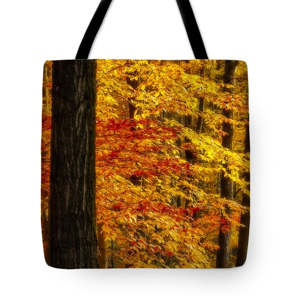 Golden Trees Glowing Tote Bag by Susan Candelario