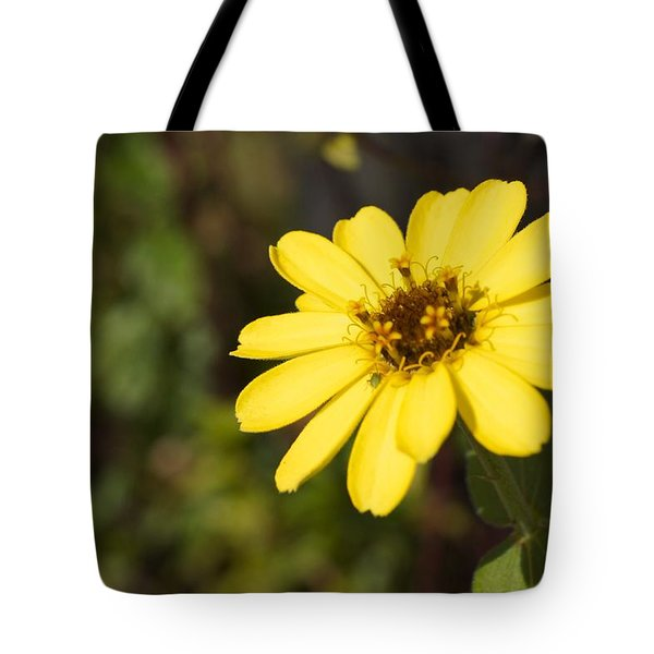 Golden Zinnia Tote Bag by Photographic Arts And Design Studio
