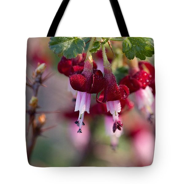 Gooseberry Flowers Tote Bag by Peggy Collins