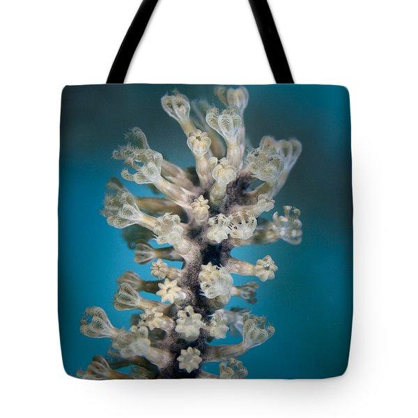 Gorgonian Tote Bag by Jean Noren