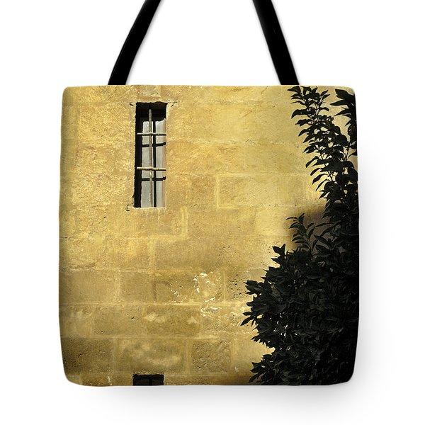 Granada Cathedral Tote Bag by Guido Montanes Castillo
