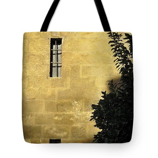 Granada Cathedral Tote Bag by Guido Montanes Castillo