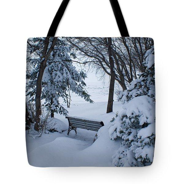 Grand Beach Solitude Tote Bag by Joanne Smoley