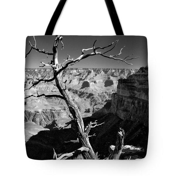 Grand Canyon Bw Tote Bag by Patrick Witz