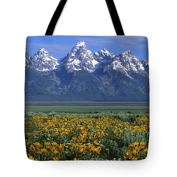 Grand Teton Summer Tote Bag by Sandra Bronstein