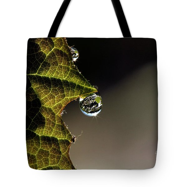 Grape Leaf with Rain Drop Tote Bag by Cindi Ressler