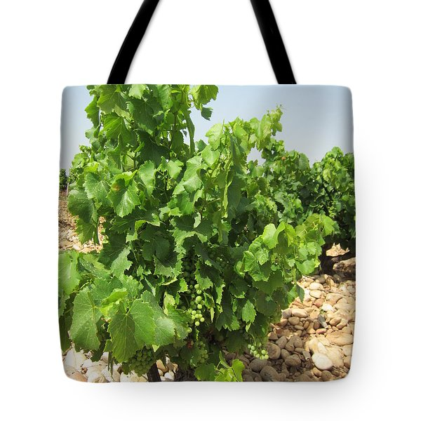 Grape Plant Tote Bag by Pema Hou