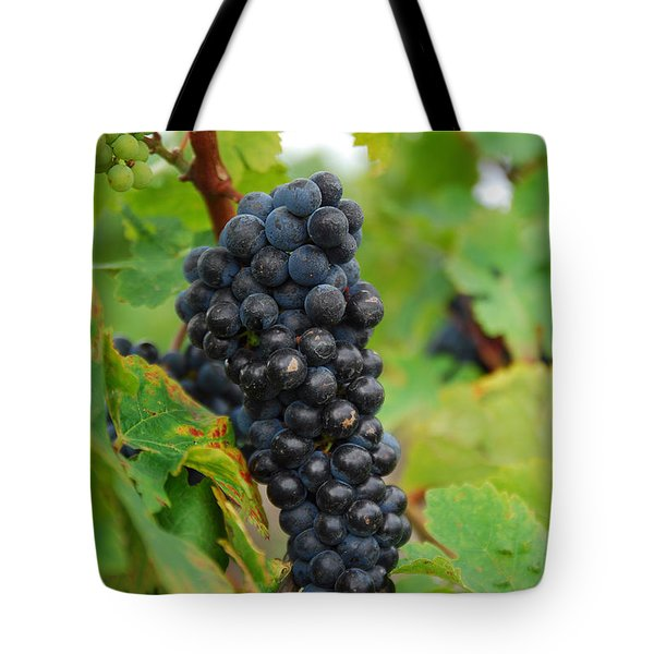 grapes Tote Bag by Hannes Cmarits