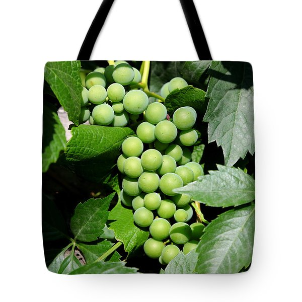 Grapes on the Vine Tote Bag by Carol Groenen