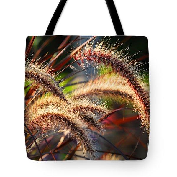 Grass ears Tote Bag by Elena Elisseeva