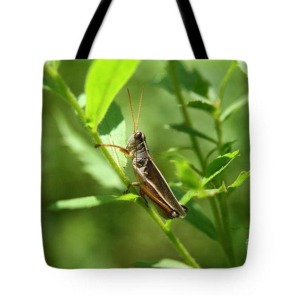 Grasshopper Climb Tote Bag by Neal  Eslinger