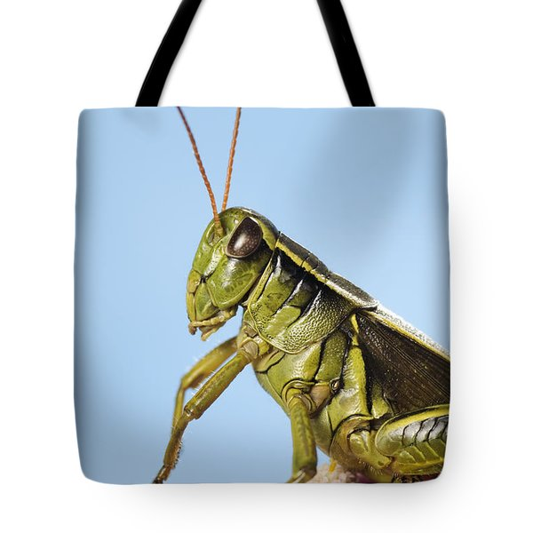 Grasshopper Close-up Tote Bag by Thomas Kitchin & Victoria Hurst