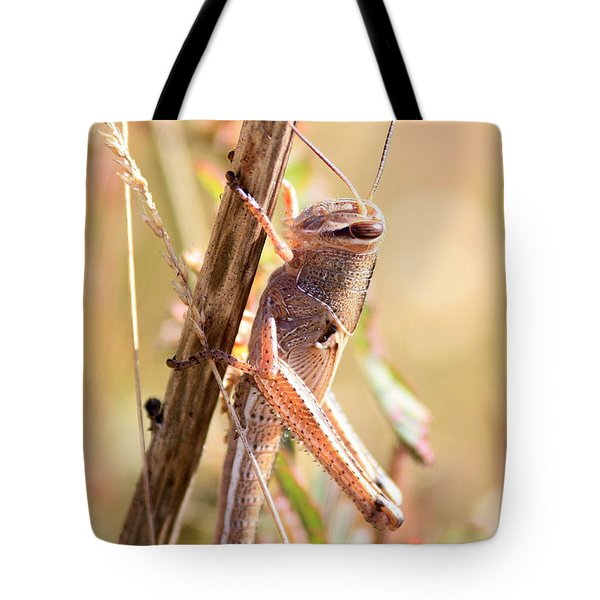 Grasshopper In The Marsh Tote Bag by Carol Groenen