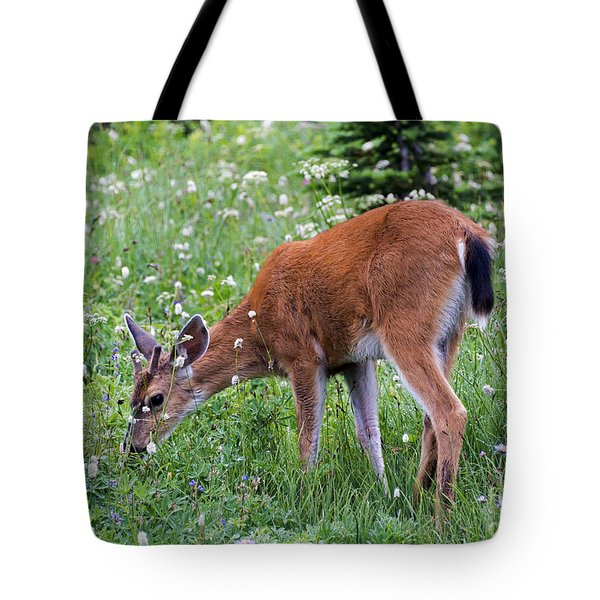 Grazing Young Buck Tote Bag by Mike Dawson